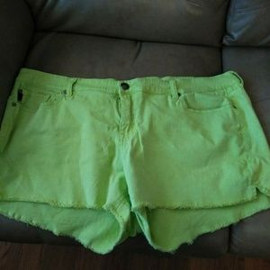 💥BUNDLE SPECIAL💥Torrid Shorts sz 26